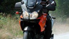 Kawasaki KLV 1000 - Immagine: 24