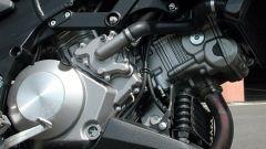 Kawasaki KLV 1000 - Immagine: 5