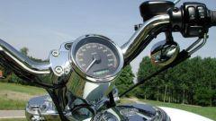 H-D 1200 Sportster Custom - Immagine: 4