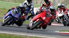In gara con la Honda CBR 600 RR by Rumi - Immagine: 8