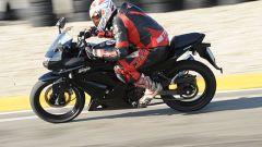 Kawasaki Ninja 250 Trophy - Immagine: 2