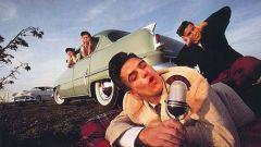 Scatti d'autore: le auto di Dingo - Immagine: 24