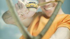 Scatti d'autore: le auto di Dingo - Immagine: 12