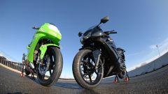 Kawasaki Ninja 250 Trophy - Immagine: 13