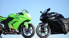 Kawasaki Ninja 250 Trophy - Immagine: 14