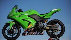 Kawasaki Ninja 250 Trophy - Immagine: 21