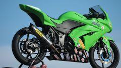 Kawasaki Ninja 250 Trophy - Immagine: 22