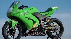 Kawasaki Ninja 250 Trophy - Immagine: 24