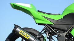 Kawasaki Ninja 250 Trophy - Immagine: 28