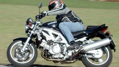 Day by day: Suzuki SV 1000 - Immagine: 22