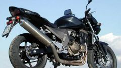 Day by day: Kawasaki Z 750 - Immagine: 7