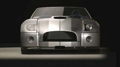 Ford Shelby Cobra Concept - Immagine: 25