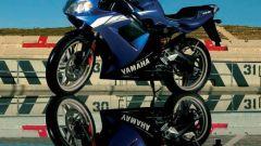 Yamaha TZR 50 - Immagine: 43