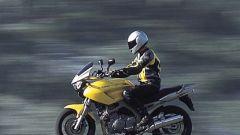 Yamaha TDM 900 - Immagine: 24