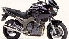 Yamaha TDM 900 - Immagine: 14