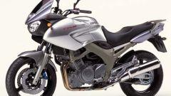 Yamaha TDM 900 - Immagine: 13