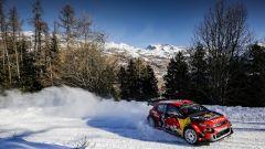 100esima vittoria di Citroen nel WRC, ecco com'è arrivata (video) - Immagine: 8