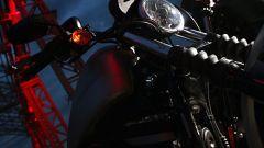Harley-Davidson 883 Iron - Immagine: 37