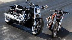 Harley-Davidson V-Rod Muscle - Immagine: 9
