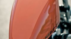Harley-Davidson Forty Eight - Immagine: 11