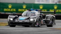 24h Daytona 2019, la Dallara-Cadillac del team Wayne Taylor, guidata da Alonso, Kobayashi, Van der Zande, Taylor