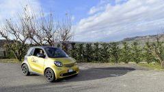 300 Miglia smart: il bellissimo panorama della provincia di Orvieto