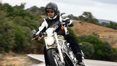 Harley-Davidson Sportster e VRSC 2007 - Immagine: 1