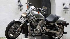 Harley-Davidson Sportster e VRSC 2007 - Immagine: 2