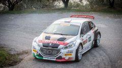 46° Rally San Marino 2018 - info e risultati  - Immagine: 1