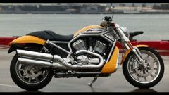 Harley Davidson Street Rod - Immagine: 5