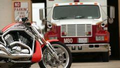 Harley Davidson Street Rod - Immagine: 28