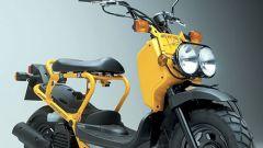 Anteprima: Honda Zoomer - Immagine: 1