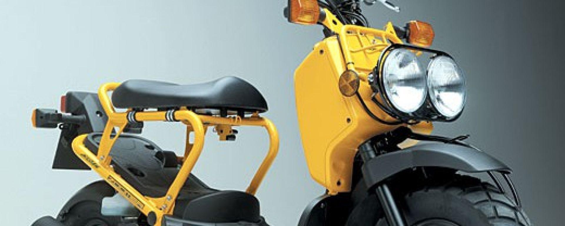 Anteprima: Honda Zoomer
