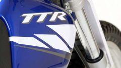 Novità 2004: Yamaha TT600 R-E - Immagine: 14