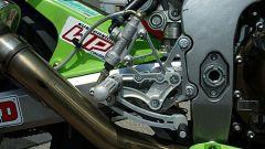 Kawasaki Ninja Trophy - Immagine: 8