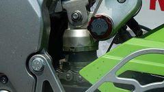 Kawasaki Ninja Trophy - Immagine: 11
