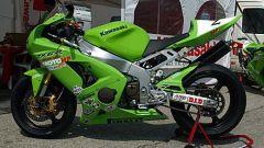 Kawasaki Ninja Trophy - Immagine: 12
