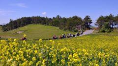 Adventouring: nasce il turismo avventura in moto - Immagine: 7