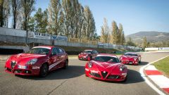 Alfa Romeo Drive Experience: Guida Evoluta - Immagine: 14