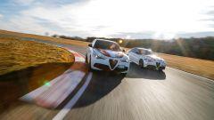 Stelvio e Giulia Quadrifoglio Alfa Romeo Racing: le novità - Immagine: 1