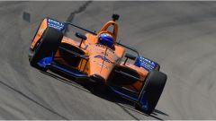McLaren in IndyCar: Zak Brown vuole Fernando Alonso