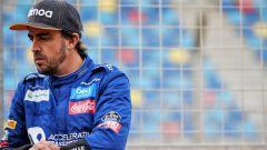 """Alonso: """"Correrò fin quando non troverò qualcuno più forte di me"""" - Immagine: 1"""