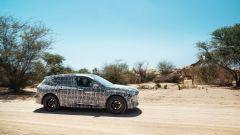 Ancora molte le camuffature di BMW iNext