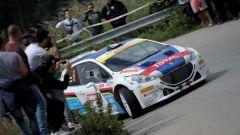 Andreucci e la sua Peugeot al Rally Targa Florio