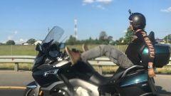 Motociclista e YouTuber russo guida la moto con i piedi. E muore