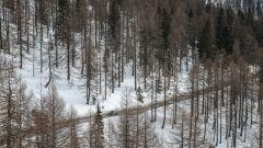 Con l'Audi RS 4 alla 20quattro ore delle Alpi 2018 - Immagine: 11