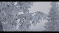 Audi: la Q7 diventa un pupazzo di neve - Immagine: 15