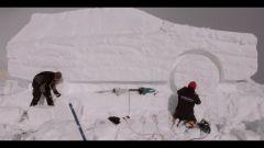 Audi: la Q7 diventa un pupazzo di neve - Immagine: 6