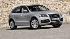 Audi Q5 Hybrid quattro - Immagine: 21