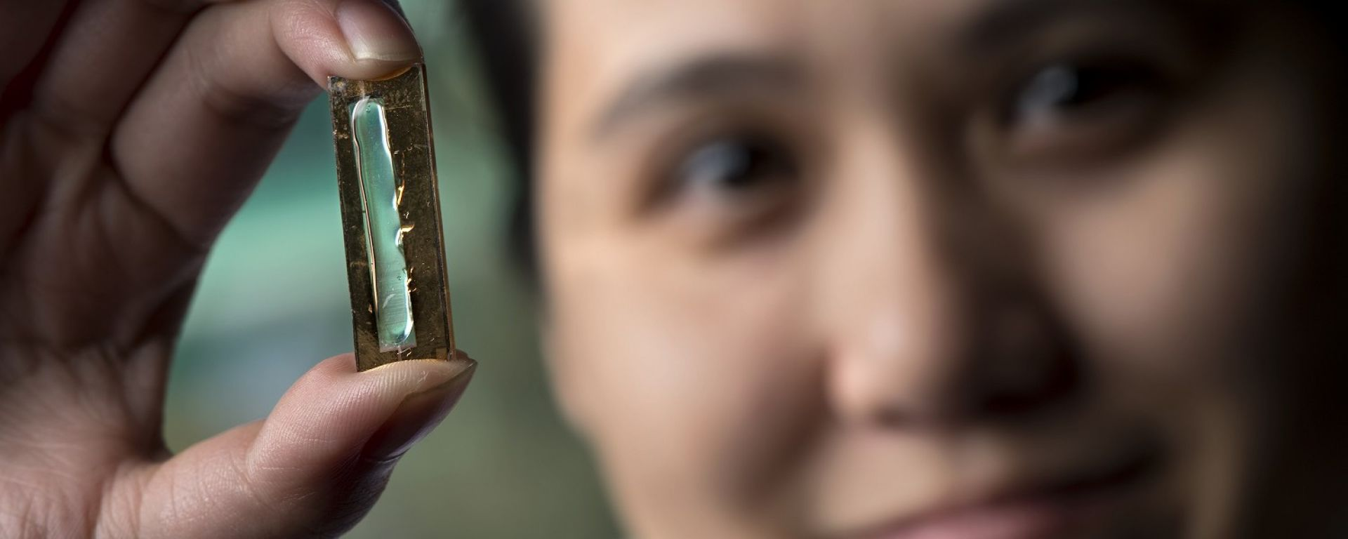 Auto elettriche: la batteria sarà for life